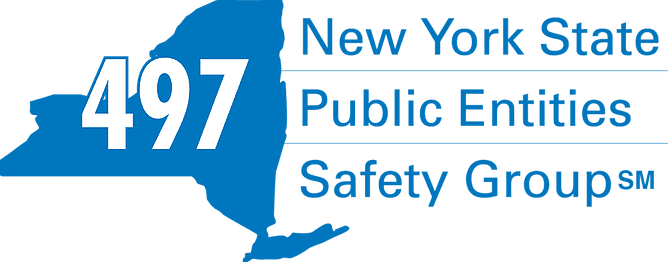 497 NY State Public Entities Safety Group Logo
